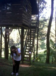 In Front of Tree house